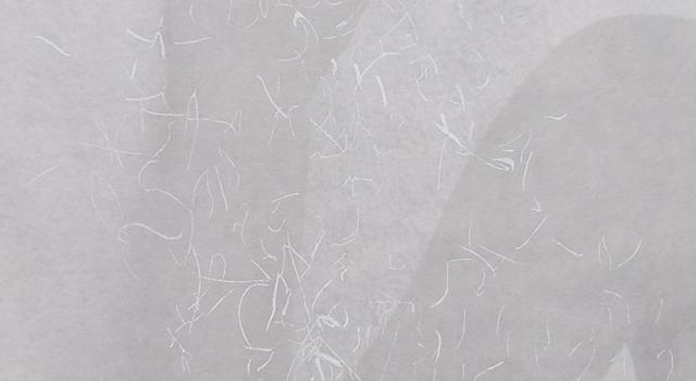 Vivoda, Tragovi 3, linorez, digitalni tisak, 64 x 97 cm, 2017..jpg