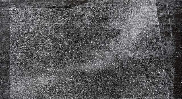 Neil Malone_fishtank1_woodengraving_900x600mm_2015-17.jpg