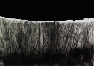 1321102011 (intaglio, serigraphy)