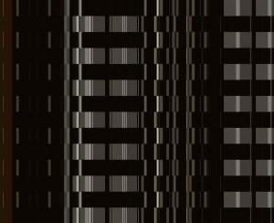 IMAGE 2013-21x (DIGITAL PRINT)