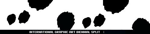 logo splitgraphic copy